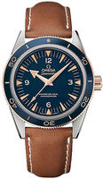 Omega Seamaster 300 Master Co-Axial 41mm  Men's Watch 233.62.41.21.03.001
