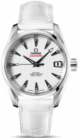 Omega Seamaster Aqua Terra Automatic Chronometer 38.5mm  Unisex Watch 231.13.39.21.54.001