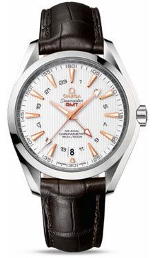 Omega Seamaster Aqua Terra 150m GMT  Men's Watch 231.13.43.22.02.004