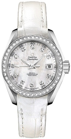 Omega Seamaster Aqua Terra   Women's Watch 231.18.30.20.55.001