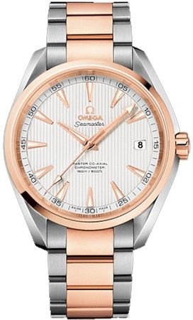 Omega Seamaster Aqua Terra 150m Master Co-Axial Anti-Magnetic Men's Watch 231.20.42.21.02.001