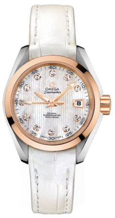Omega Seamaster Aqua Terra   Women's Watch 231.23.30.20.55.001
