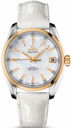 Omega Seamaster Aqua Terra Automatic Chronometer 38.5mm  Unisex Watch 231.23.39.21.55.002