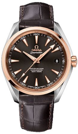 Omega Seamaster Aqua Terra 150m Master Co-Axial Anti-Magnetic Men's Watch 231.23.42.21.06.003