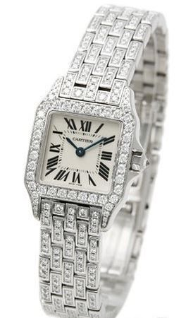 Cartier Santos Demoiselle  Women's Watch WF9003YA