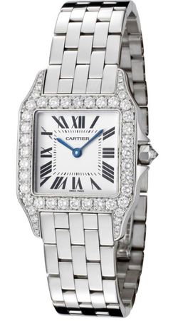 Cartier Santos Demoiselle  Unisex Watch WF9004Y8